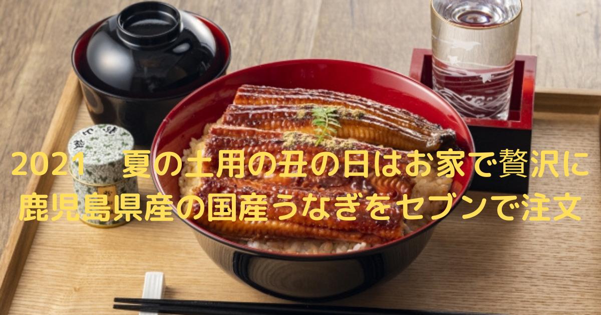 うなぎの蒲焼丼